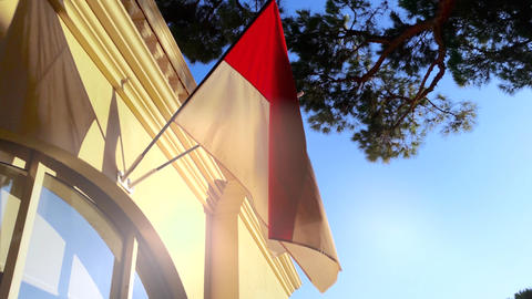 Flag of Monaco Footage