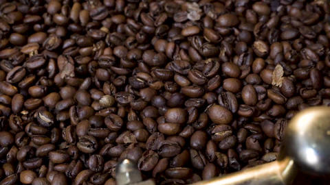 Roasted Coffee Beans Left for cooling on cooling tray, being mixed Live Action
