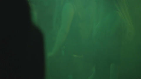 Silhouettes of clubbers on the dance floor, nightclub atmosphere Footage