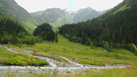 Beautiful mountain landscape, peaceful valley, stream flows down Footage