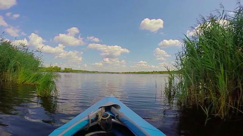 Boating on wide river, beautiful nature. Traveling, tourism, POV Footage