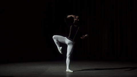 Young Asian Ballet Dancer Posing Footage