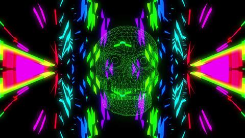 Acid Skull 4K 02 Vj Loop Animation