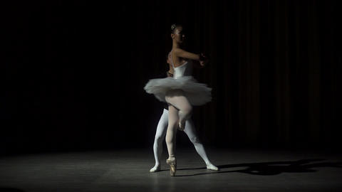 Ballet Dancers Posing On Stage Footage