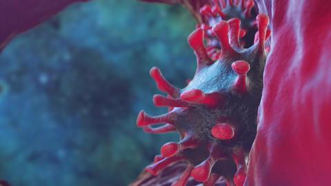 Virus And Microbe 2