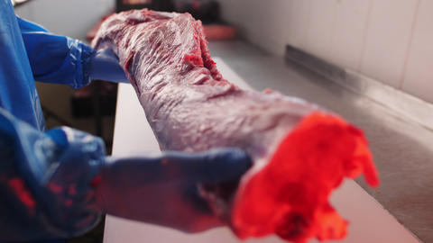 worker puts piece of raw meat on table in workshop closeup Live Action