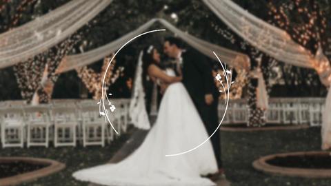 10 Wedding Elements Animation