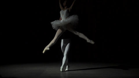 Man And Woman Dancing Classical Ballet Footage