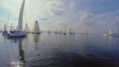 Marine landscape, silhouettes of yachts in the sea, white sails Footage