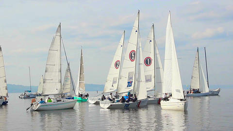 Racing yachts line up before start, extreme sport, sailing Footage
