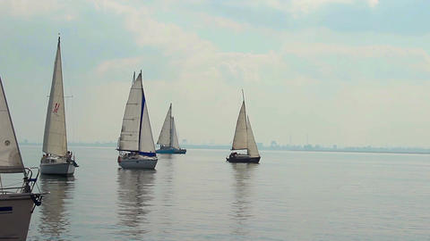 Sailing boats in open sea, race, yachting, sport, traveling Footage