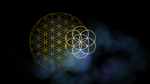 The Flower of Life Forming The Seed of Life and the Egg of Life Live-Action