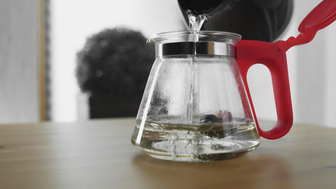 Pouring boiled water in glass teapot with Green Chinese Flower Tea Blooming GIF