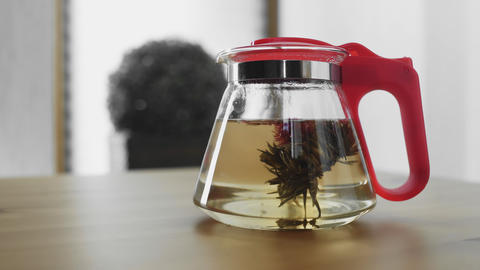 Traditional Chinese flower tea blooming in glass teapot GIF
