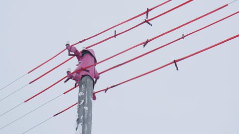 pole top and cables with pink material against grey sky Live Action