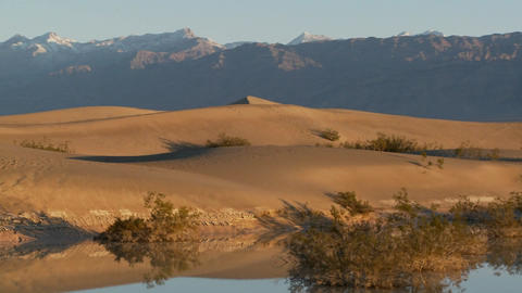 A pan across desert dunes at an oasis Stock Video Footage