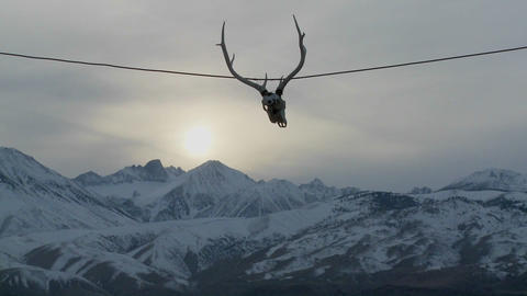 A cow skull hangs from a wire at a Western ranch Stock Video Footage