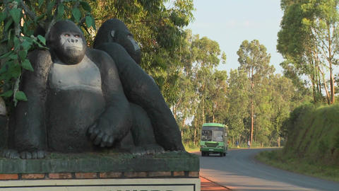 A statue of gorillas celebrates the entrance to Virunga... Stock Video Footage