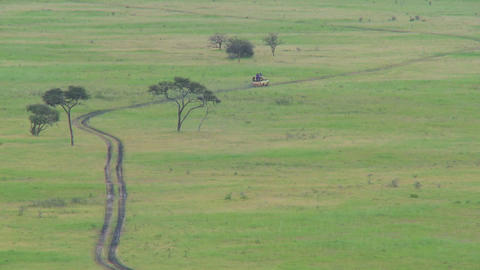 A safari jeep travels on a distant road in Africa Live Action