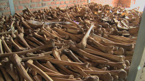 Leg bones of skeletons in long rows offer a grim... Stock Video Footage