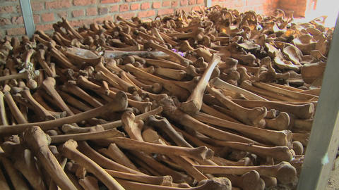 Leg bones of skeletons in long rows offer a grim remembrance of the Rwanda genocide Footage