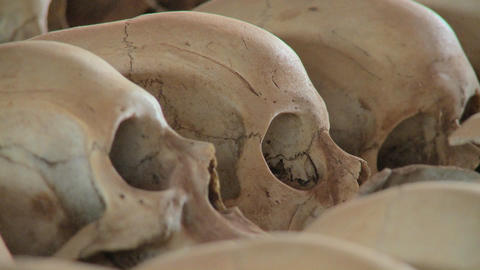 Close up of skulls on display in a church dedicated to the Rwandan genocide Footage
