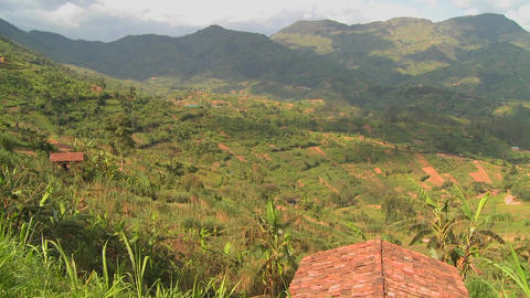 Panning shot across the lush tropical countryside of Rwanda Stock Video Footage