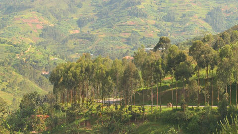 Minibus and minivan travel a steep mountain road in Rwanda Stock Video Footage
