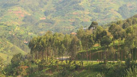 Minibus and minivan travel a steep mountain road in Rwanda Footage