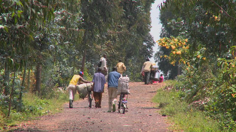 People walk their bicycles loaded with goods down a rural road in Rwanda Footage