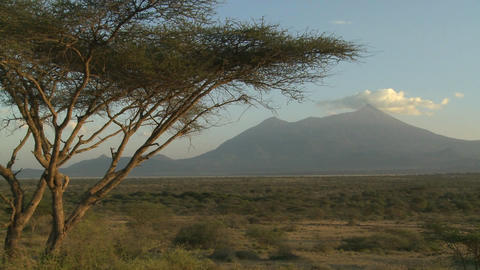 Mt. Meru in the distance, across the Tanzania savannah Stock Video Footage