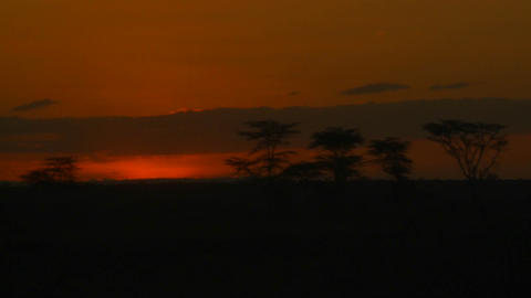 A beautiful sunrise over the plains of Africa, with... Stock Video Footage