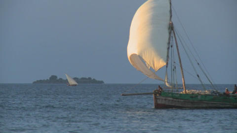 A beautiful dhow sailboat moves past the coast of Zanzibar Footage