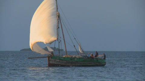 A beautiful dhow sailboat moves past the coast of Zanzibar Stock Video Footage