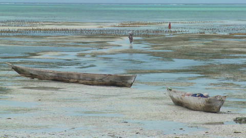 Women walk out into a tidal bay at low tide with dugout... Stock Video Footage