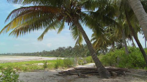 Pan across a perfect tropical beach on a tropical island paradise Footage