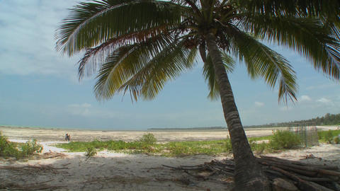 A view of a perfect tropical beach on a tropical island paradise Footage