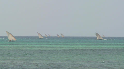 Dhow sailboats head out to sea off the coast of Zanzibar Stock Video Footage