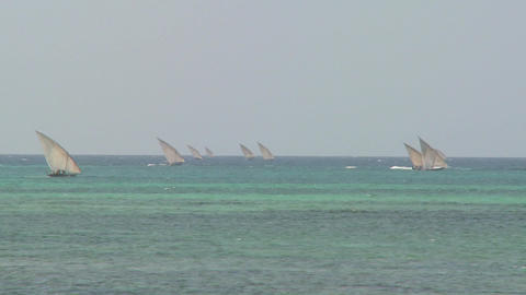 Dhow sailboats head out to sea off the coast of Zanzibar Footage