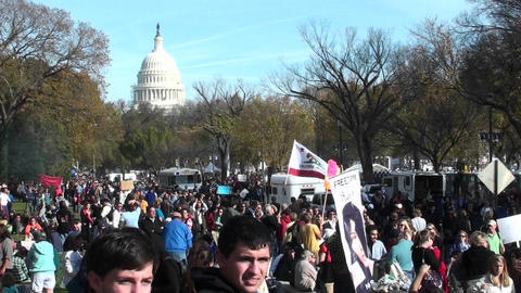 Huge crowds of protestors gather in Washington D.C. for a protest rally Footage