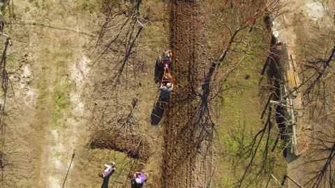 Aerial view, Caucasian farmers furrowing soil and preparing field for planting Live Action