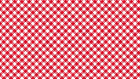 Gingham check diagonal pattern of red. Seamless loop Animation