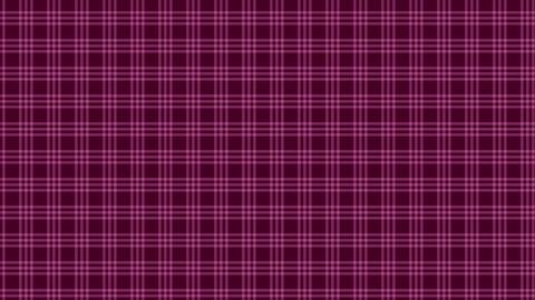 Tartan check pattern of pink. Seamless loop Animation