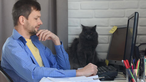 Home-based specialist stroked his beloved cat Live Action
