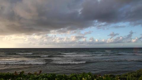 カリブ海の朝001 Footage