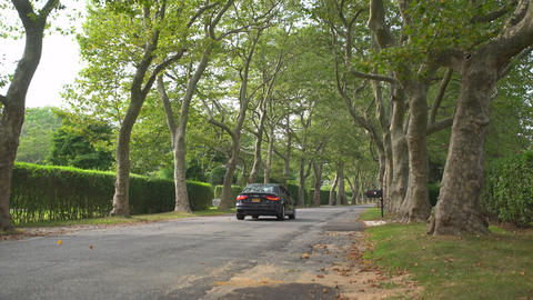 Car traveling down a peaceful tree lined street Footage