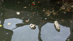 A view of trash floating Footage