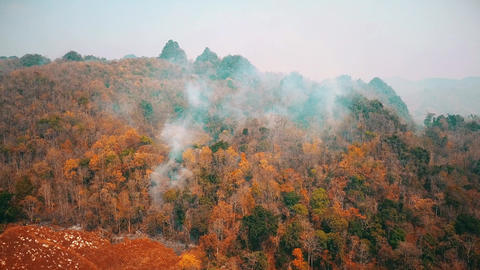 Smog of bushfire fires. Deforestation and Climate crisis. Toxic haze from Live Action