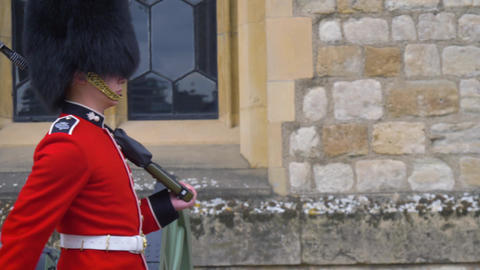 British guard soldier on duty Live Action