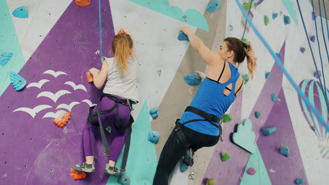 Little girl enjoying artificial wall climbing with mother doing high-five having Live Action